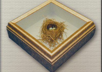 Framed Object